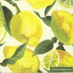 Servetten Ihr Limoenen Emma Bridgewater 16 x 16 cm